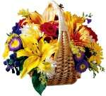 Send Flowers to India with Interflora Online Flower Service - Fresh Flowers Delivered Worldwide